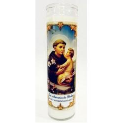 شمع زجاجي - القديس انطون البدواني - 20سم